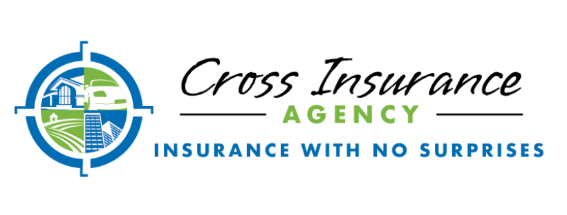 Cross Insurance Agency - Insurance with no surprises. Company logo. Compass with four points plus images inside the compass for a home, auto, farm and large buildings.